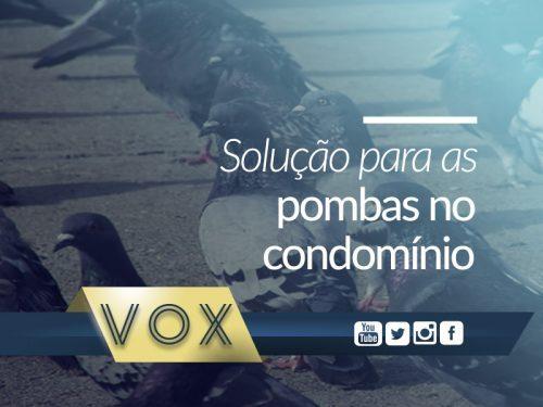 Pombas no Condomínio Soluções - Vox Gestão de Condomínios
