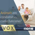 animais-em-condominio-vox-administração-de-condomínios-curitiba-londrina